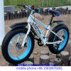 Cheap Carbon Beach Snow Bike with OEM