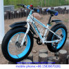 New Design Carbon Snow Fat Tire Bike with OEM