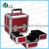 New Beauty Cosmetic Makeup Case (HX-C4533)