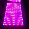 12W LED Plant Grow Lamp (JL-PG02)
