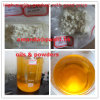 99% Pure Trenbolone Acetate Raw Steroids Revalor-H Powders for Man Bodybuilding