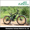 48V Battery Powered Mountain Kit Electric Fat Tire Bike