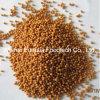 Ginkgo Biloba Extract Slow Release Pellets