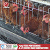 Chicken Laying Egg Cage for Africa Nigiera Poultry Farming Equipment A3l90
