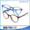 Personalized Design Tr90 Optical Frame Optics Reading Glasses