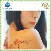 2016 Custom Fashion Design Water Transfer Tattoo Sticker (JP-TS077)