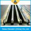 Parallel Placed Automatic Conveyor Passenger Public Escalator China Top Supplier