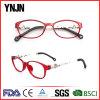 Ynjn Most Popular OEM New Model Eyewear Frame Glasses (YJ-G81128)