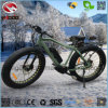Alloy Frame Fat Tire Ebike Electric Beach Bicycle for Adult