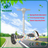 Factory Direct Two-Wheel Electrical Intelligent Handrail Balance Car 10-Inch Pole Thinking Electric Scooter Self Balancing
