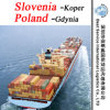 China Shipping Agent Koper (Slovenia) ; Gdynia (Poland) - FCL & LCL Container