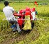 Mini Crawler Rice Combine Harvester 4lz-0.8 Low Price