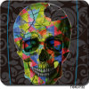 Water Transfer Printing Skulls Hydrographic Film Skull Water Transfer Film