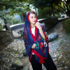 Chinese Style Art Soft Silk Printing Scarves