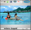2 Persons Max Capacity Freely Assembled Full Transparent Kayak