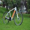 MTB Hidden Battery Electric Bicycle