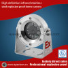 300W High Definition Infrared Stainless Steel Explosion Proof Dome Camera