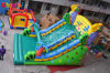 Parrot Inflatable Slide for Sale Chsl464