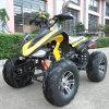 150cc Gy6 Engine Hot Sell Adult Bike Zc-ATV-15A
