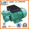 dB Series Single Peripheral Electric Water Pump