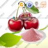 Natural Acerola Cherry Extract 20% Vitamin C