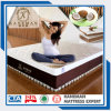 Hard Feeling Pure Coir Coconut Fiber Pad Mattress