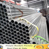 Hot Sale Thin Wall Ss400 Pre-Galvanized Steel Pipe