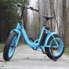 20inch 500W Folding Electric Bicycle