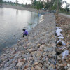 Riverbank Stablization Gabion Mattress/Reno Mattress/River Mattress