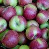 Jiguan Apple