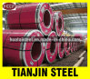 High Quality Hot Rolled Stainless Steel Strip (200 /300 Series, 400 /600 Series)