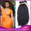 100% Brazilian Virgin Human Hair Kinky Straight Hair Weave