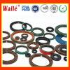 Nok Wt Type Oil Seals