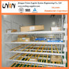 Trays Carton Storage Flow Through Rack for Cartons