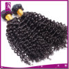 Kinky Curl Brazilian Hair Weave Brown and Black Color