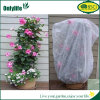 PE Protective Waterproof Plant Cover for Different Plants