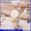 Fashion Leather Strap Quartz Ladies Custom Watch (Wy-079C)