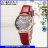 Business Alloy Hot Selling Watch ODM Leather Watch (WY-134C)