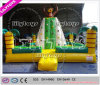 2015 Year Newest Lion Theme Rock Climbing Wall for Sale (J-SG-040)