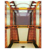 FUJI Quality Passenger Lift Produced in China