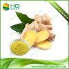 Ginger Root Extract for Spice, Beverage, and Shampoo