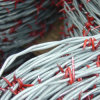Electro Galvanized Barbed Wire with High Quality (TSBW-1)