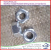 Galvanized Nut for Bolt