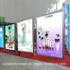 Ceiling Hanging Slim LED Light Box for Picture Frame with LED Light Panel