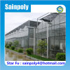 Multi-Span Commercial Glass Greenhouse for Sale