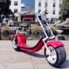 City Coco Electric Mobility Scooter Fat Tire Electric Motorcycle