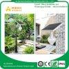 High Lumen 12W LED Solar Garden Moon Path Housing Light