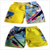 Miss Adola Colorful Fashion Styles Printing Beach Shorts for Young Boys (4006)