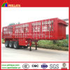 40FT Fence Cargo Semi Trailer, Side Wall Stake Semi Trailer