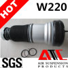 2203202438 2203205113 W220 Front Air Shock Absorber for Mercedes Benz